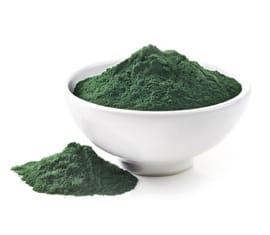 Extracto Seco de Algas Espirulinas