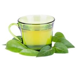 Extracto Hidroglicérico de Té Verde